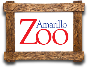 Amarillo Zoo