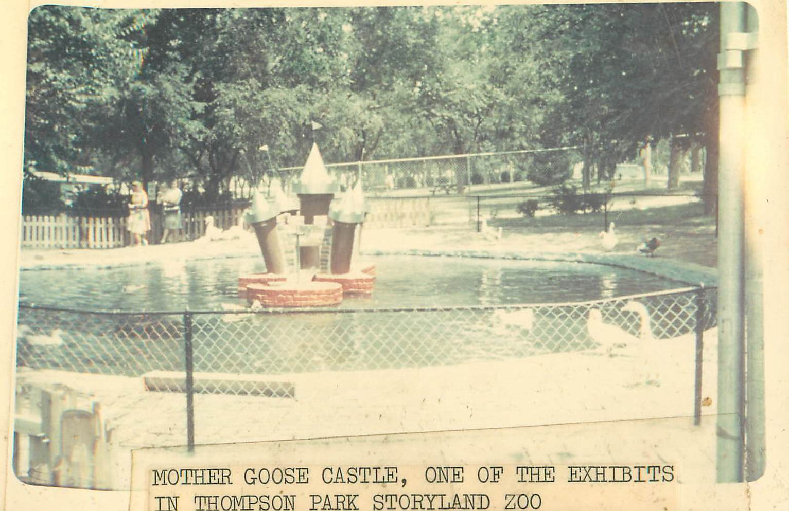 Newspaper photo of duck pond
